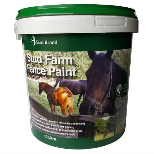 stud farm fence paint horses chewing